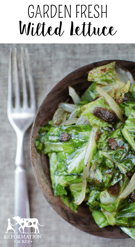 Salad greens wilted in a hot vinegar and bacon dressing. Garden Fresh Wilted lettuce is the perfect accompaniment for steak!