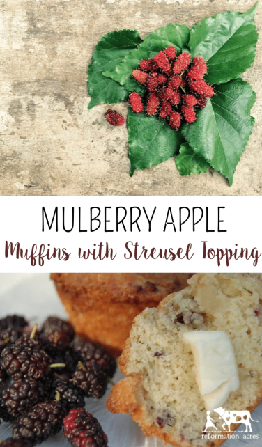 Everybody needs a basic berry muffin this recipe works beautifully to make Mulberry Muffins with Apples and Streusel Topping (Or with your favorite berry!)