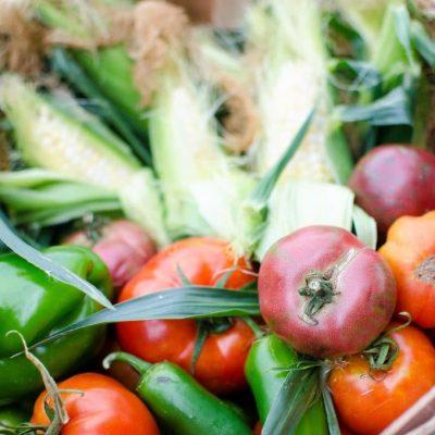 ~2010 Vegetable Garden~