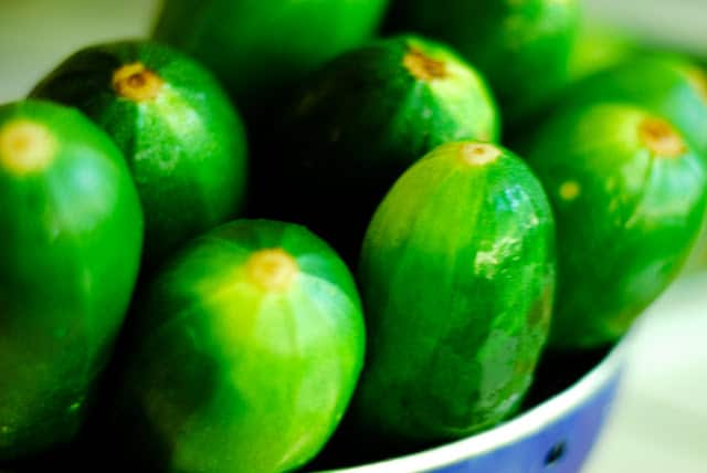How to Freeze Zucchini & Other Summer Squash