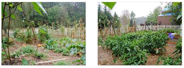 ~September's Garden~
