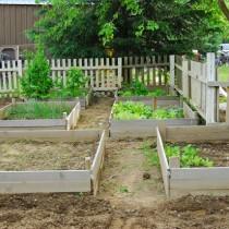 mays+garden-3.jpg