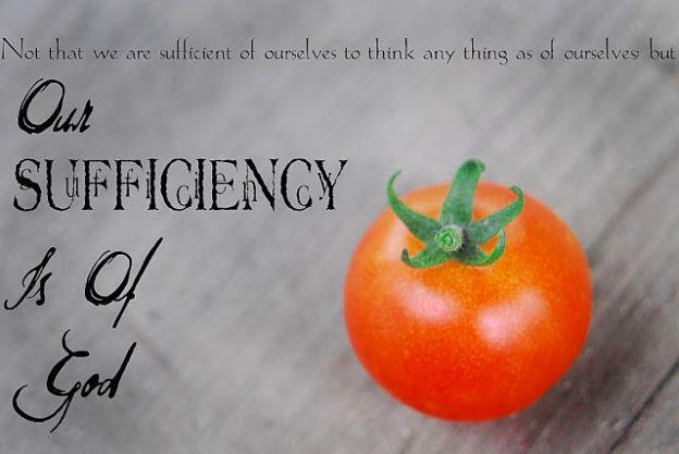 Pondering Self-Sufficiency