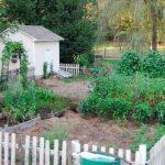 ~August's Garden~