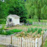 ~June's Garden~