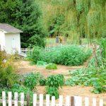 ~2012 Garden: July~