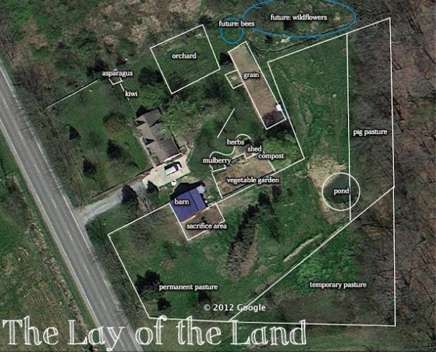 Your Questions: The Lay of the Land