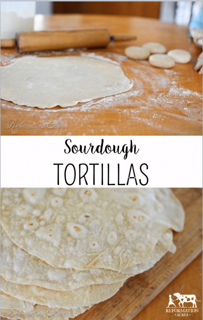 Homemade Sourdough Tortillas (These actually are really good & don't taste like cardboard!)