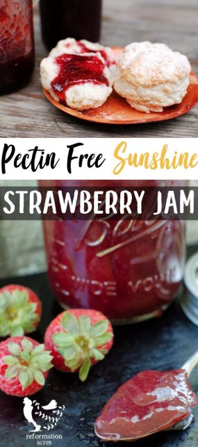 A beautiful, thick, rich, jewel colored pectin-freestrawberry jam recipe made without large amounts of sweetener and infused with the flavor of the sun!
