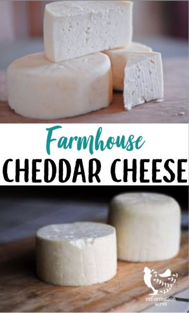 Farmhouse Cheddar Cheese ages more quickly than other cheeses which means you'll be making grilled cheese sandwiches with your own homemade cheese sooner!