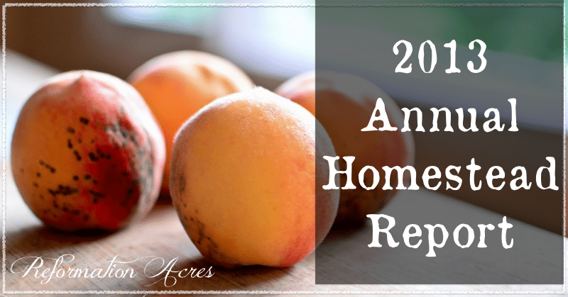 annual homestead report.001