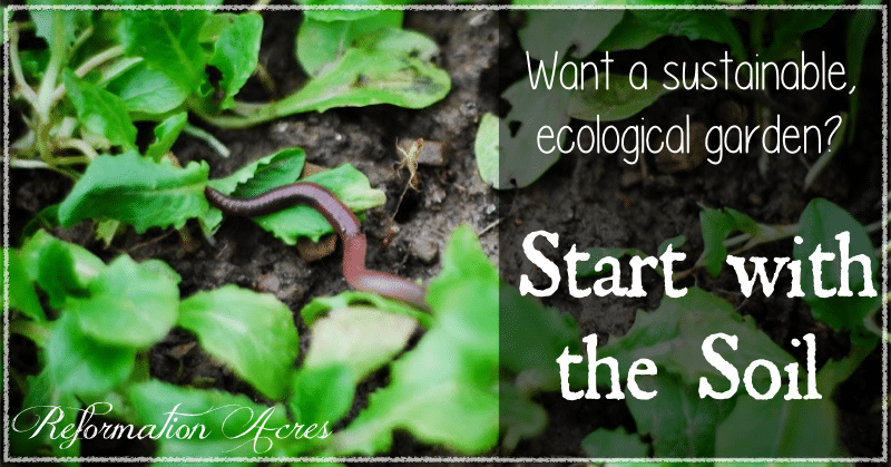 Want a sustainable, ecological garden? Start by nurturing your soil!