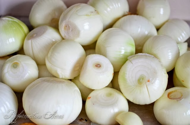 How to Can Caramelized Onions- this is a great way to store onions that have been in storage and are starting to sprout.
