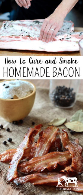 Learn how to cure and smoke your own homemade bacon!