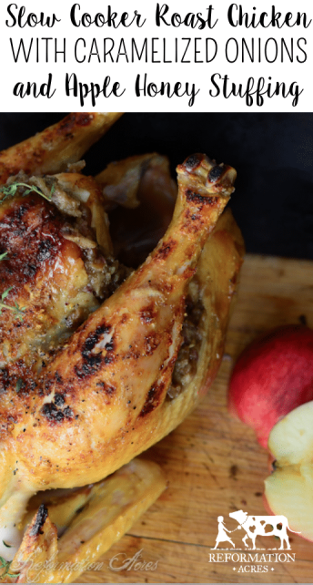 Roast Chicken with Caramelized Onion and Apple Honey Stuffing