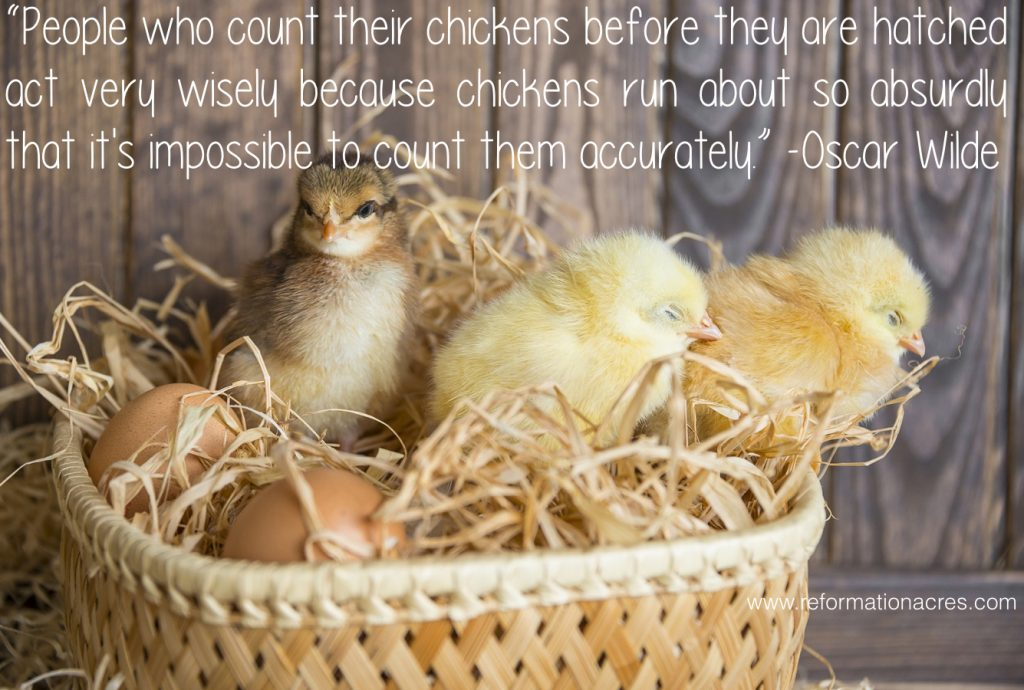 People who count their chickens before they are hatched act very wisely because chickens run about so absurdly that it's impossible to count them accurately. -Oscar Wilde