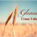 ~Gleanings from February~