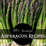 ~35+ Beautiful Asparagus Recipes~