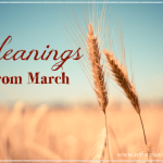 ~Gleanings From March~