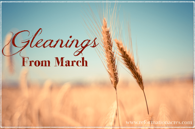 Gleanings From March: Link Love on Reformation Acres