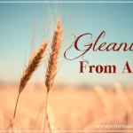 Gleanings From April
