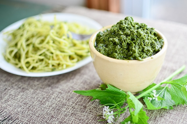 Garlic mustard, a tasty edible weed, does double duty acting both as the garlic and green in pesto. Garlic mustard is invasive, so harvest to your heart's content.