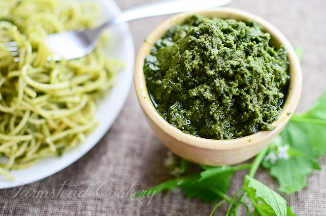 Garlic mustard, an invasive edible weed, works as both the garlic and green in when you turn it into tasty Garlic Mustard Pesto.
