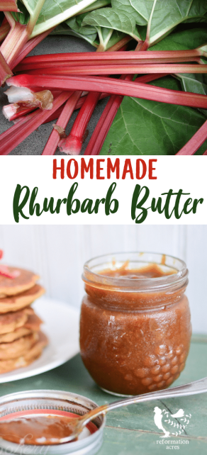 I'm breaking up with jelly & jam. Fruit butters, like Rhubarb Butter, is my new love that doesn't require sugary baggage, babysitting, and tricky pectin.