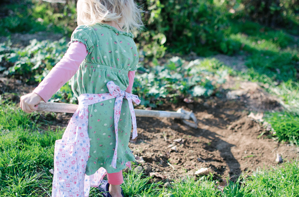 Use These 11 Strategies to Help You Organize the Homestead