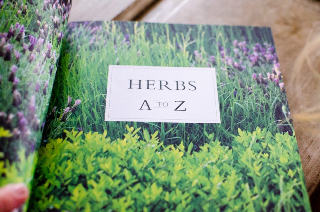 The New American Herbal-6