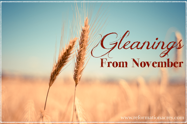 Gleanings From November