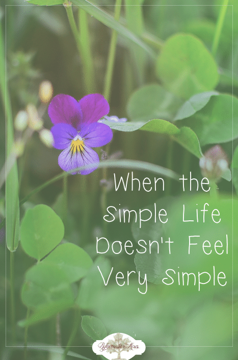 "Can I be honest with you? This past year has been one of the most difficult I can remember. My flesh often found itself grumbling and complaining. ""This is the simple life?! It doesn't feel very simple to me at all!"""