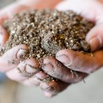 How To Make Your Own DIY Potting Soil Mix