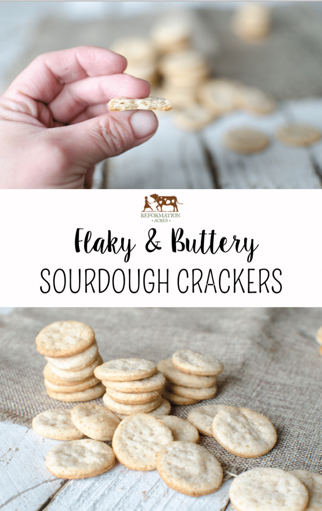 Flaky & Buttery Sourdough Crackers