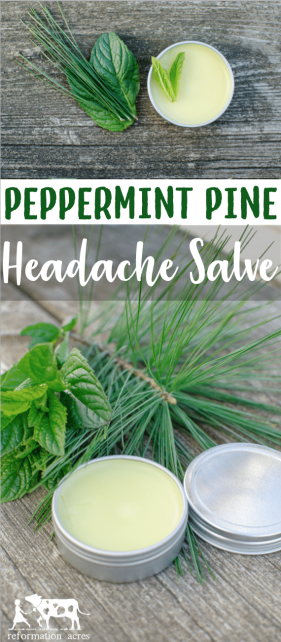 Massage a dab of Peppermint Pine Headache Salve on your temples when you start to feel a headache. Breathe deeply and feel your headache melt away.