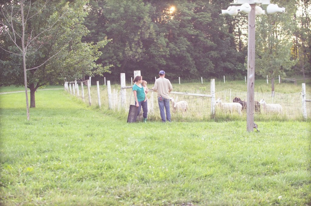 Day in the Life of a Homesteader-106