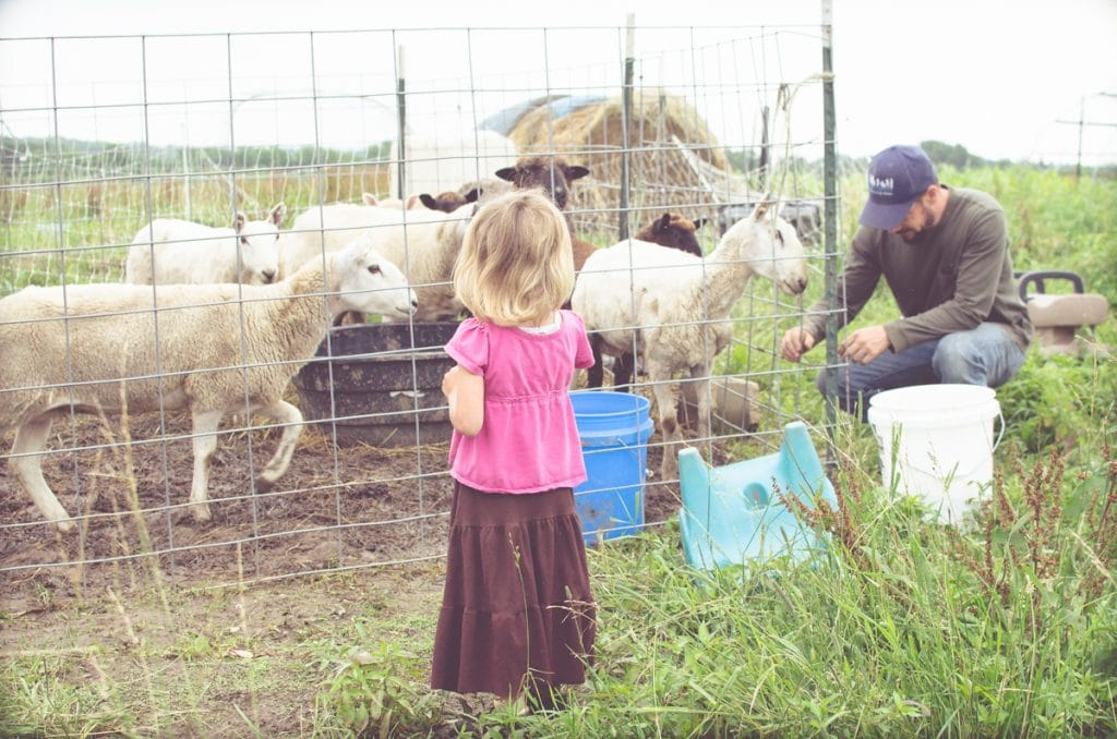 Day in the Life of a Homesteader-16