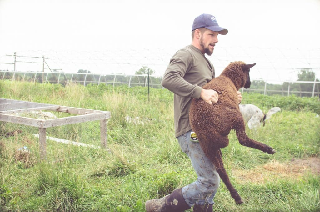 Day in the Life of a Homesteader-18