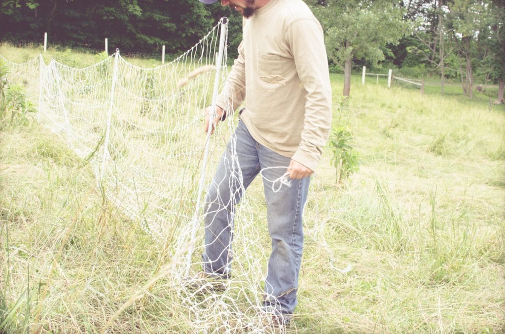 Day in the Life of a Homesteader-51