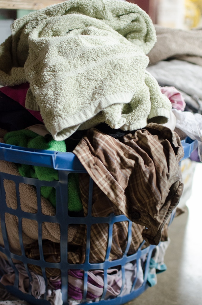 Large Family Laundry (Homestead Style)