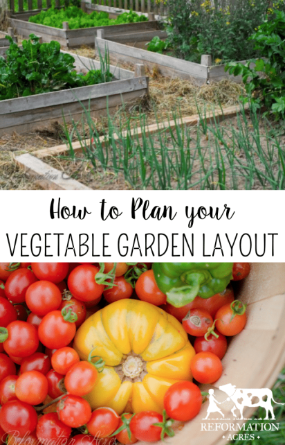 Want the Healthiest Vegetables? Use These Tips for your Garden Plans