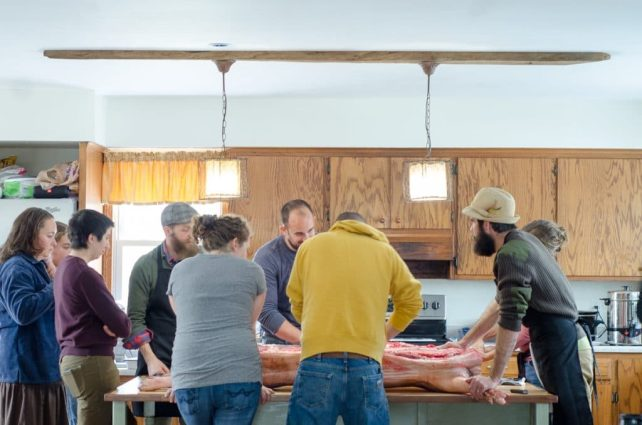 2016 Homestead Hog Butchering Workshop