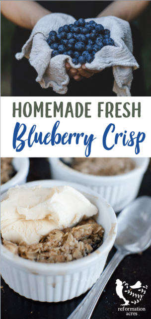 Sweet & tart Fresh Blueberry Crisp with homemade streusel topping is so delicious served warm with a scoop of vanilla ice cream! And it's so simple to prepare, even the kids can make it!