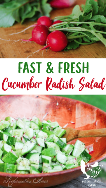 Crisp cucumbers, spicy radishes, and tangy vinegar dressing. Cucumber Salad with Radishes is a light, refreshing salad that is quick & simple to prepare!