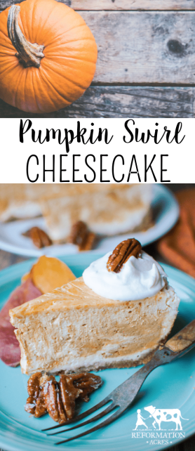 Pumpkin Swirl Cheesecake with Ginger Candied Pecans + 5 Cheesecake Baking Tips