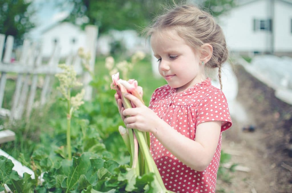 Make Your Child Want to Help on the Homestead with These Gift Ideas
