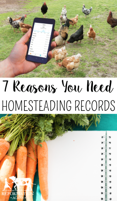 7 Reasons You Need to Keep Homesteading Records