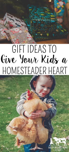 Make Your Child Want to Help on the Homestead with These Presents