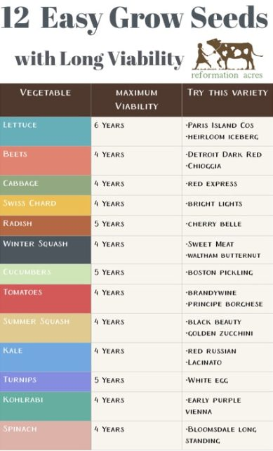 How Long Do Seeds Last 13 Heirloom With A Viability These Varieties