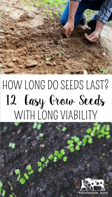 How Long Do Seeds Last 10 Heirloom With A Viability These Varieties